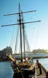 Sealing Boat